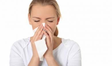 Alergologija